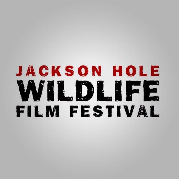 award-jackson-hole