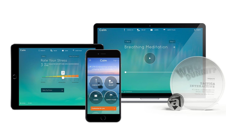 calminthestorm-app