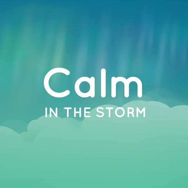 Tactica Interactive | Calm In the Storm